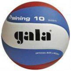 Gala Training 10,  мяч волейбольный