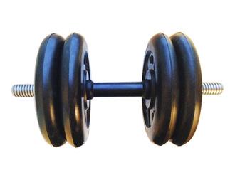 Гантель разборная готовая весом 20 кг (4 х 5 кг)
