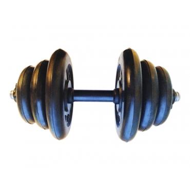 Гантель разборная готовая весом 17,5 кг (2 х 5 кг + 2 х 2,5 кг + 2 х 1,25 кг)