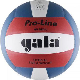 Мяч волейбольный PRO-Line BV5211L